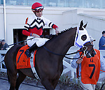 Feb 2010: Jody Slew and Miguel Mena before the SilverBulletDay Stakes at the Fairgrounds in New Orleans, La.