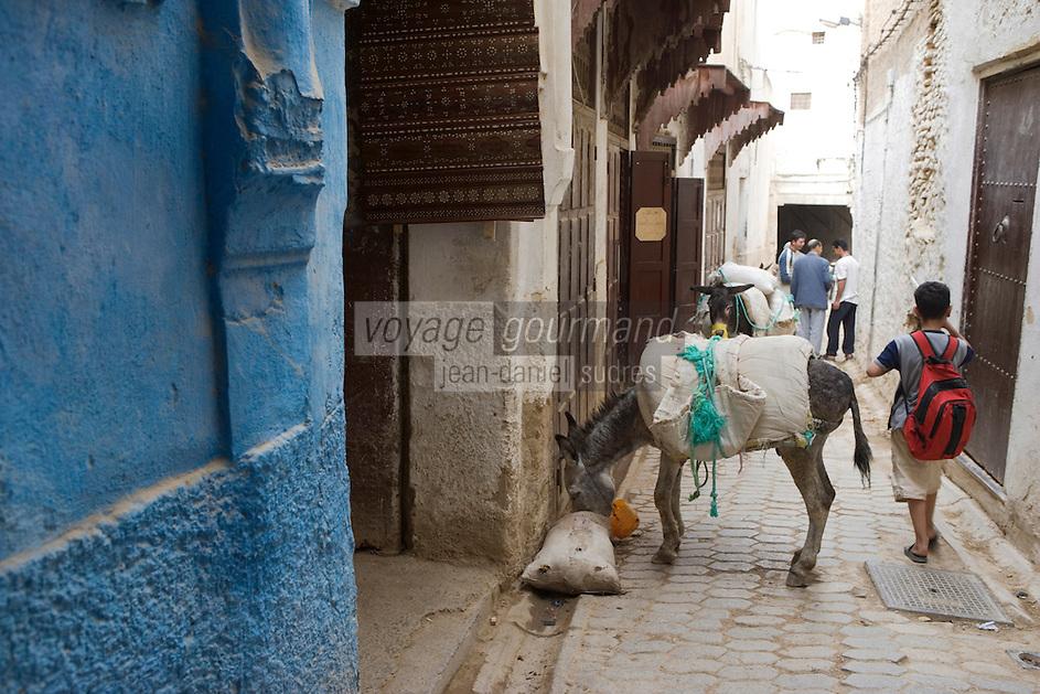 Afrique/Afrique du Nord/Maroc/Fèz: Dans une ruelle de la médina de Fèz-El-Bali un petit ane qui sert au transport des marchandises et un enfant rentrant de l'école