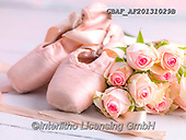 Assaf, STILL LIFE STILLEBEN, NATURALEZA MORTA, paintings,+Ballerina, Ballet, Bunch Of Flowers, Bunch of Roses, Color, Colour Image, Dancing, Floor, Floral, Flower, Flowers, Photograph+y, Romantic, Rose, Roses, Satin, Shoe, Silk,Ballerina, Ballet, Bunch Of Flowers, Bunch of Roses, Color, Colour Image, Dancing+Floor, Floral, Flower, Flowers, Photography, Romantic, Rose, Roses, Satin, Shoe, Silk++,GBAFAF20131029B,#i#, EVERYDAY ,photo,photos
