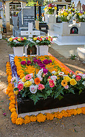 Oaxaca; Mexico; North America.  Day of the Dead Celebration.  Grave Decorated with Flowers.  Marigolds are the traditional flower used for this occasion.