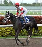30 January 2010: Accredit and jockey Julien Leparoux after the Sunshine Millions Sprint Stakes at Gulfstream Park in Hallandale Beach, FL.