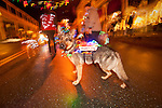 A searcg dig wutg a canine group with lit-up dogs in Sutter Creek's annual Parade of Lights Christmas parade downtown on a rainy night in the  Mother Lode of Calif.