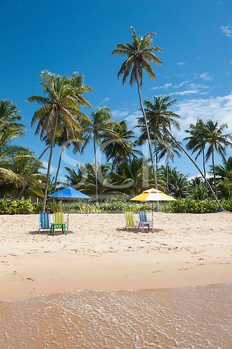 Praia do Forte, Bahia State, Brazil. Palm trees, two sunshades, four deck chairs, beach.