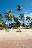 Praia do Forte, Bahia State, Brazil. Palm trees, two sunshades, four deck chairs, beach.