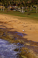 A couple strolls along the coral shoreline of Kepuhi beach on west Molokai.