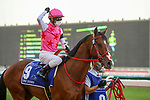 March 27, 2021: PINK KAMEHAMEHA, #9 in the post parade for the UAE Derby on Dubai World Cup Day, Meydan Racecourse, Dubai, UAE. Shamela Hanley/Eclipse Sportswire/CSM