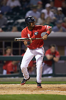 Nick King (8) of the Georgia Bulldogs squares to bunt against the Charlotte 49ers at BB&T Ballpark on March 8, 2016 in Charlotte, North Carolina. The 49ers defeated the Bulldogs 15-4. (Brian Westerholt/Four Seam Images)