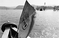 India, Narmada River, Narmada dams and protest movement of NBA Narmada Bachao Andolan, movement to save the Narmada river, and affected Adivasi in their villages, village Manibeli, in September 1993, Shulpaneshwar temple submerged in the reservoir of the SSP Sardar Sarovar Dam during monsoon, boat with flag of NBA