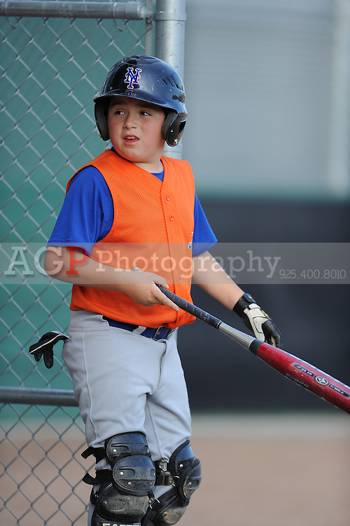 The AAA Mets of Pleasanton National Little League  March 17, 2009.