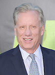 James Woods at The Universal Pictures' World Premiere of SAVAGES held at The Grauman's Chinese Theatre in Hollywood, California on June 25,2012                                                                               © 2012 Hollywood Press Agency