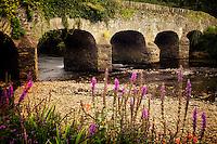 Bridge over Gearhmeen River with wildflowers, Killarney National Park, Ireland