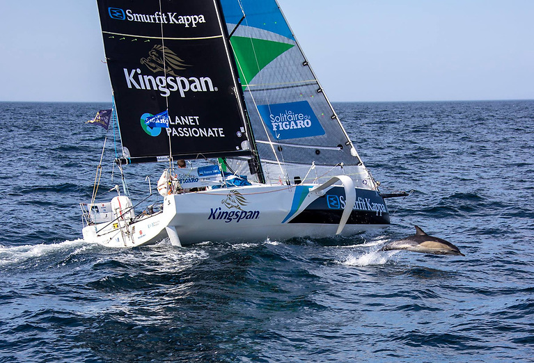 A friend in need? Even with the support of friendly dolphins, the final leg of Stage 3 of the Figaro Solo 2021 has not gone well for Tom Dolan
