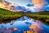 Sud Calédonien