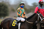 January 23, 2021: Istan Council (6) with jockey Luis Quinonez aboard before the running of the Pippin Stakes at Oaklawn Racing Casino Resort in Hot Springs, Arkansas. ©Justin Manning/Eclipse Sportswire/CSM
