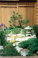 Japanese garden detail in pocket garden off deck