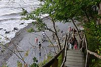 Abstieg beim Königstuhl an der Kreideküste im Nationalpark Jasmund auf der Insel Rügen, Mecklenburg-Vorpommern, Deutschland