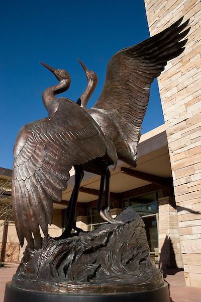 Bird statue at the Wildlife Museum, Denver, Colorado, USA John offers private photo tours of Denver, Boulder and Rocky Mountain National Park. .  John leads private, wildlife photo tours throughout Colorado. Year-round. .  John offers private photo tours in Denver, Boulder and throughout Colorado. Year-round.