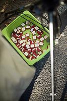 a box of recovered transponders post-race<br /> <br /> Elite Women's race<br /> Koppenbergcross 2015