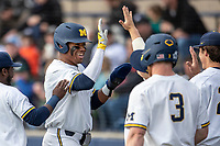 Michigan Wolverines designated hitter Jordan Nwogu (42) is greeted in the dugout after scoring in the NCAA baseball game against the Michigan State Spartans on May 7, 2019 at Ray Fisher Stadium in Ann Arbor, Michigan. Michigan defeated Michigan State 7-0. (Andrew Woolley/Four Seam Images)