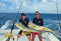 sport fishing, fishermen hold dorado or mahi mahi, Coryphaena hippurus, British Virgin Islands, Caribbean, Atlantic