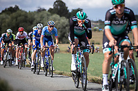 Niki Terpstra (NED/Total Direct Energie) in the peloton. <br /> <br /> 99th Brussels Cycling Classic 2019<br /> One Day Race: Brussels > Brussels 189.4km<br /> <br /> ©kramon