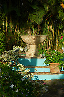 A stone fountain with blue painted steps set in a tropical garden.