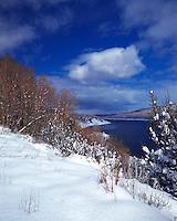 Winter landscape along a lake. California.