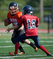 Chilliwack Giants - Red vs Royal City Hyacks Atom Golden Helmet Tournament