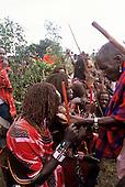 Lolgorian, Kenya. Siria Maasai Manyatta; laibon elder offering cooked meat of sacrificed meat to moran.