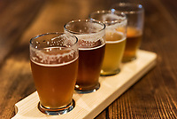 Assorted craft beer samples at a micro-brewery.