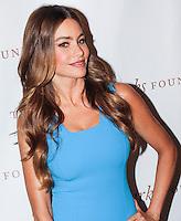 NEW YORK, NY - JUNE 04: 2013 Gordon Parks Foundation Awards at The Plaza Hotel on June 4, 2013 in New York City. (Photo by Jeffery Duran/Celebrity Monitor)