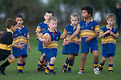 Patumahoe Junior Rugby Club