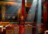 Kham, Tibet 2006. Monk at Gasang Monastery., Trindu, 2006