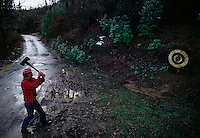 """Third generation logger in Shasta Trinity Forest practices ax throwing to compete at the county fair. <br /> The remote community of Hyampom is said to have derived from a Wintu Native American word referring to """"slippery place."""""""