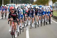 Brian van Goethem (NED/Lotto-Soudal) pacing the pack<br /> <br /> 108th Scheldeprijs 2020 (1.Pro)<br /> 1 day race from Schoten to Schoten BEL (173km)<br /> <br /> ©kramon