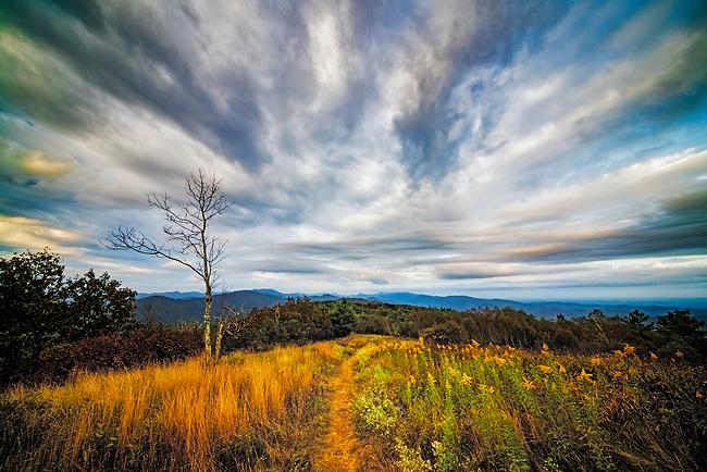 Autumn's morning light, Appalachian Trail