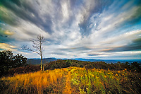 Autumn's morning light, Appalachian Trail