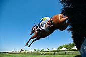 3rd Queens Cup Novice Stakes - Gibralfaro