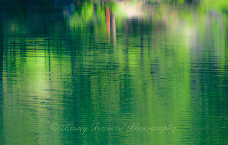 """""""SOFTLY SURVEYOR""""<br /> <br /> Reflections on a lake create the illusion of an impressionist painting. ORIGINAL 24 X 36 GALLERY WRAPPED CANVAS SIGNED BY THE ARTIST $2,500. CONTACT FOR AVAILABILITY."""