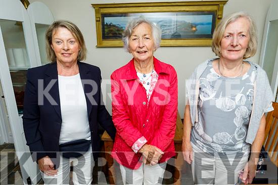 Hilda Dunne, Joan Rudder and Pat McMorrow enjoying the evening in Bella Bia on Saturday.
