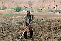 A farmer ploughing is field next to the 34 meters Bamiyan Buddha. Hazarajat, Afghanistan.