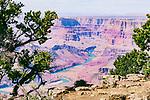 South Rim, along Desert View Drive, view of the Colorado River, Grand Canyon National Park, Arizona, USA