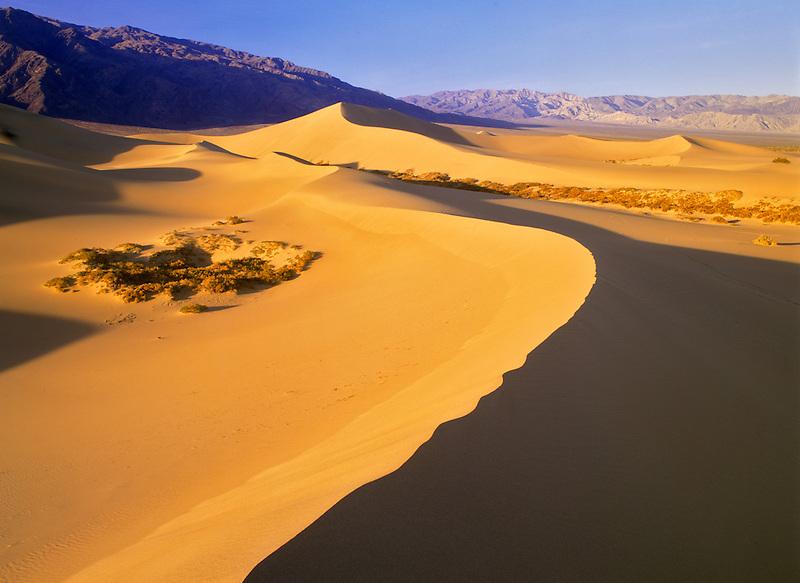 Long knife edged sand dunes. Death Valley National Park, California