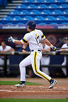 Michigan Wolverines designated hitter Drew Lugbauer (17) at bat during the first game of a doubleheader against the Canisius College Golden Griffins on June 20, 2016 at Tradition Field in St. Lucie, Florida.  Michigan defeated Canisius 6-2.  (Mike Janes/Four Seam Images)