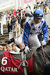 11/09/2011, Gérald Mossé saddling up on Reliable Man in the paddock before the race Qatar Prix Niel