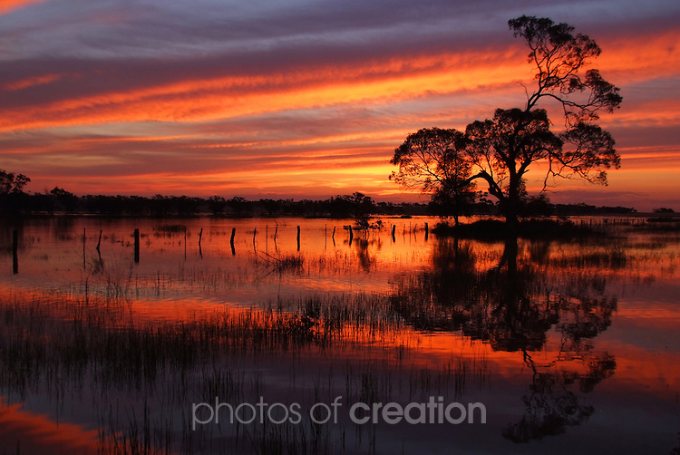 Sundown on Lake Colah Kapana newr Narrandera Nsw. This lake which has not seen water for apx 40years provided a great backdrop for my shoot..