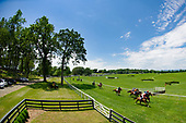 06/13/2020 - MIDDLEBURG SPRING RACES