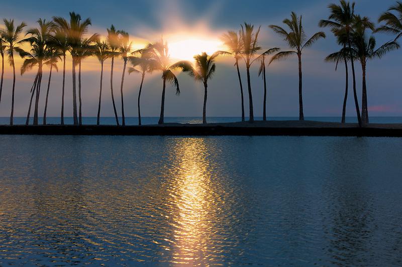 Palm trees and sunset. Hawaii, The Big Island