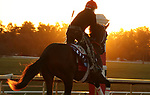 Keepmeinmind, trained by trainer Robertino Diodoro, exercises in preparation for the Breeders' Cup Juvenile at Keeneland Racetrack in Lexington, Kentucky on November 4, 2020.
