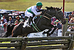 Jockey Jody Petty and his horse Irish Prince makes their jump in The Genesee Valley Hunt Cup  during the Genesee Valley Hunt Races held at The Nations Farm in Geneseo, NY.